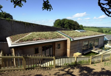 Talk to us about green roofs today