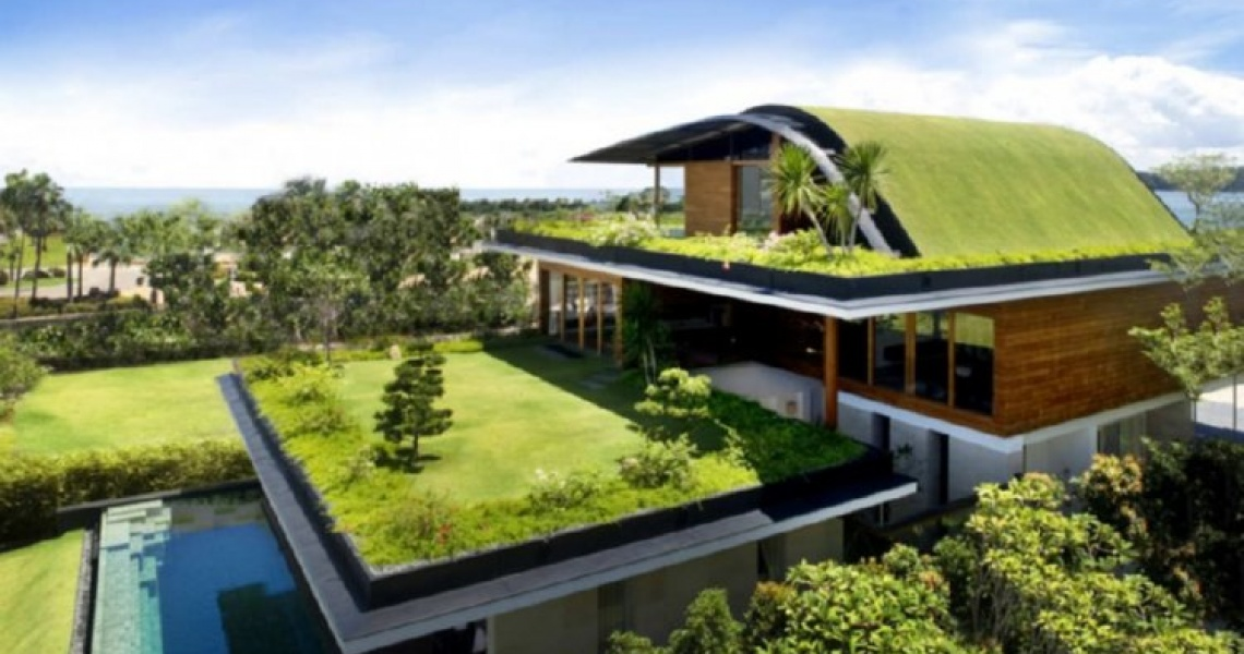 About Green Roofs Premier Roofing